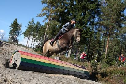 Anne Cathrine og hesten Pilgrim på weekendkurs