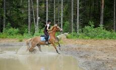 Line og ponnien Ludde på feltrittstrening