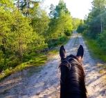 Tina og hesten Sandra på tur