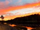 Solnedgang rundt Volletjenn