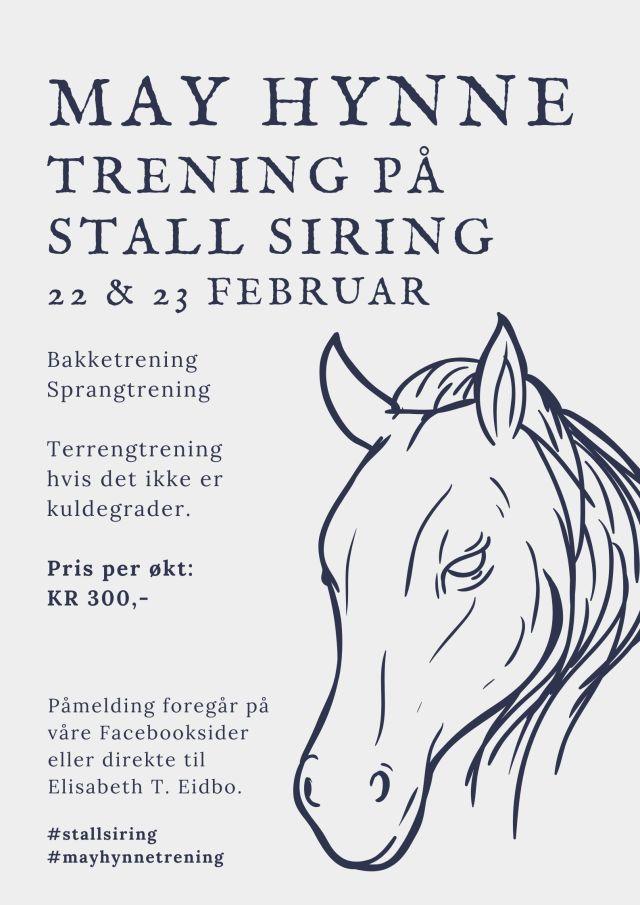 Handdrawn Dark Blue Horse Poster (3)